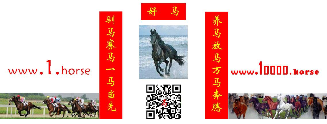 驯马赛马一马当先,养马放马万马奔腾――好马